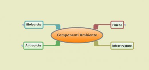 componenti ambiente